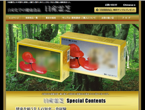 【038】ECサイト(健康商品販売)